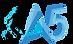 logotipo_liga5_pareceiro da Nova Liga.pn