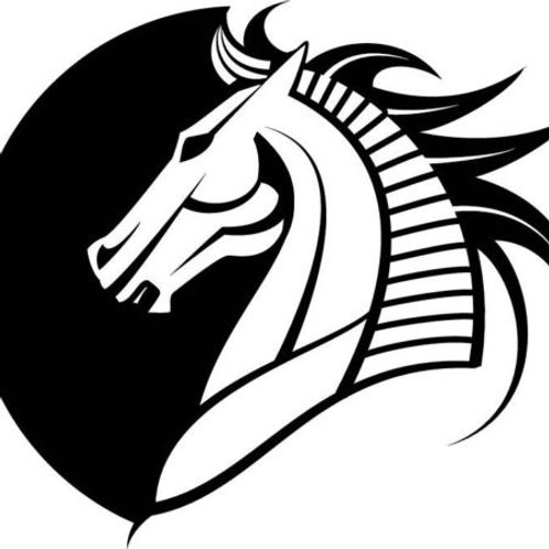 Horse Head Profile Decal
