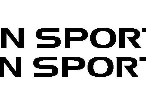 Pair Shogun Sport 2.5 TD Decals
