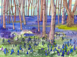 Bluebell Wood - Art & Soul