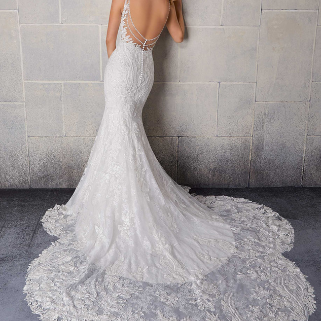 Lace and sparkle wedding dress