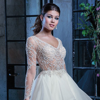Ballgowns with a sleeve