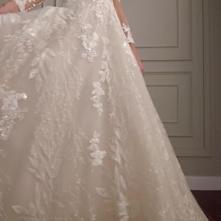 Long sleeve sparkly wedding dress