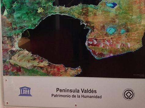 Península Valdés - Troller