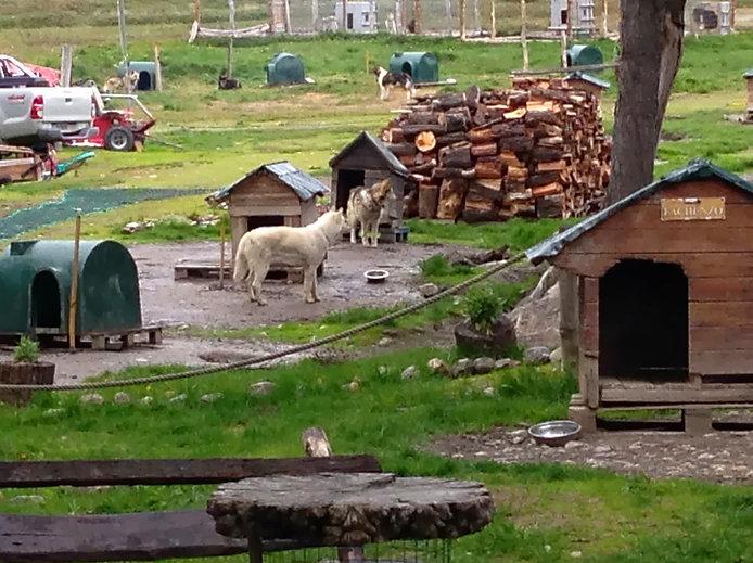 Expedição-ushuaia-troller-natal em ushuaia 6