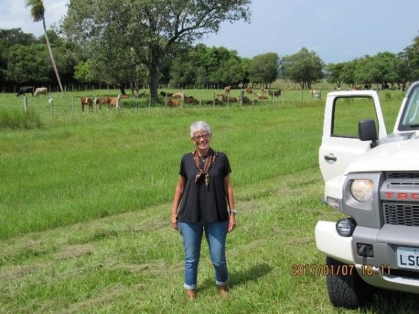 Ruta 12 – Pampa Argentino