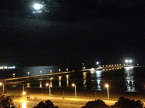 Puerto Madryn e Península Valdés - Troller 1