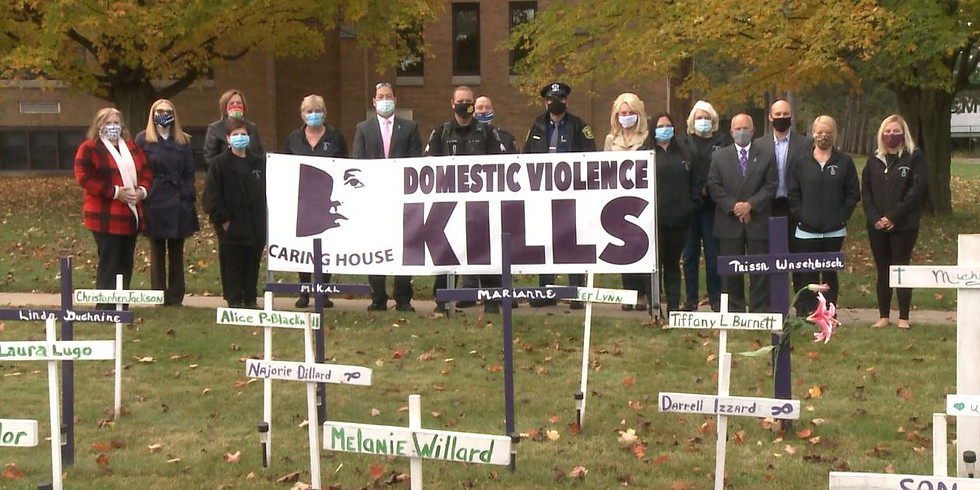 Dickinson County Domestic Violence Awareness