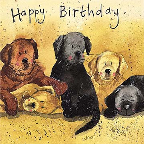 Litter of Labs Happy Birthday Card