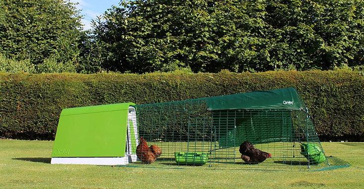 eglu-go-modern-chicken-coop-green.jpg
