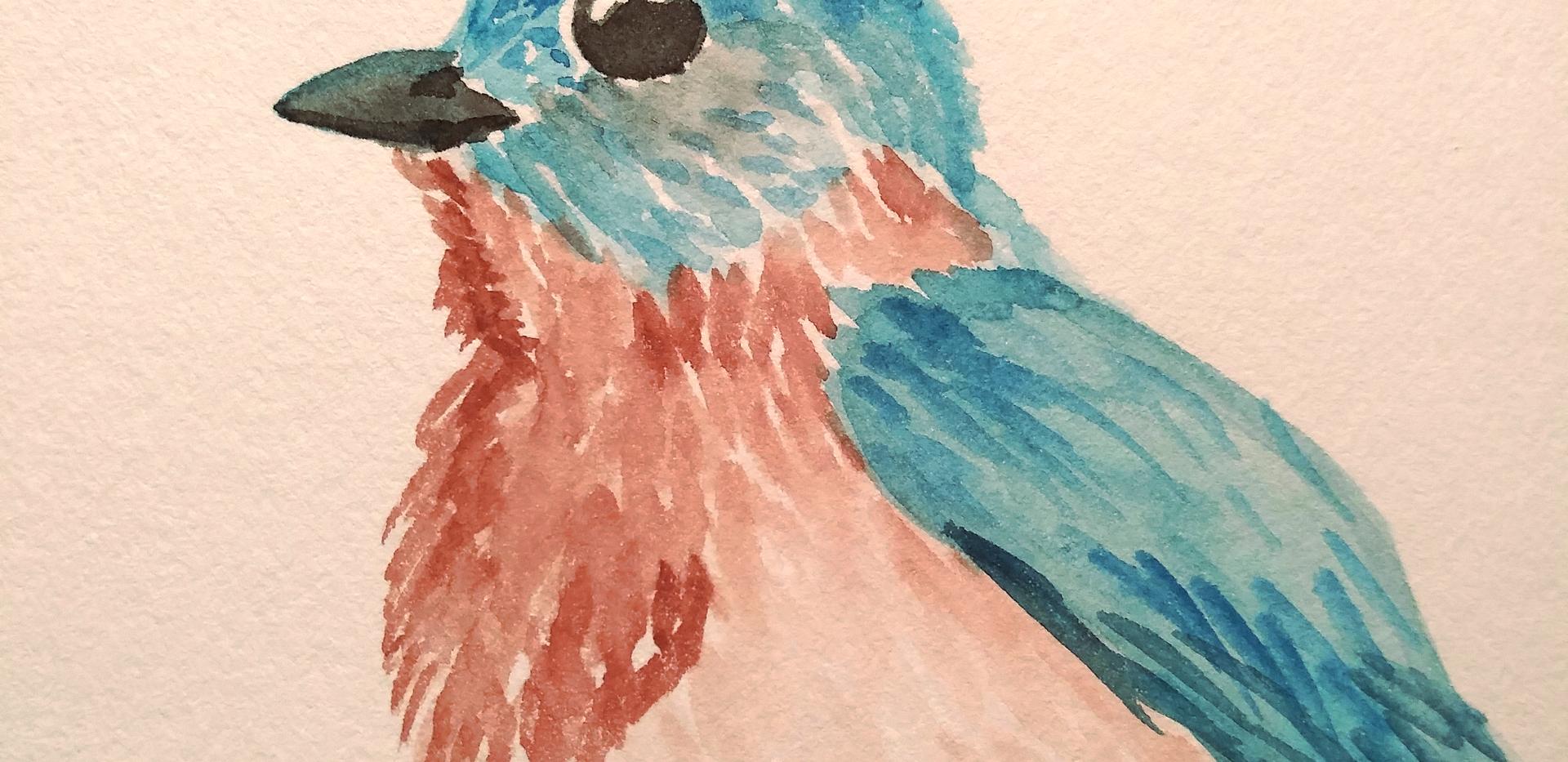 bluebird ZOOM.png