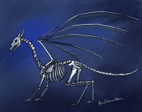 Nightflight Skeleton