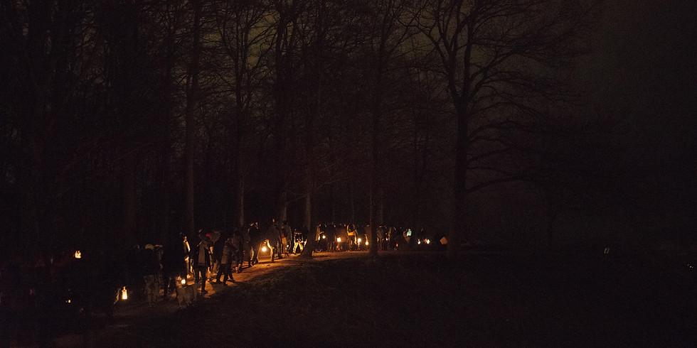 Vi farer vild i den mørke skov