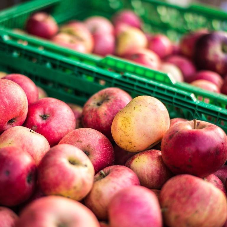 Æblerov på Brabrandstien!
