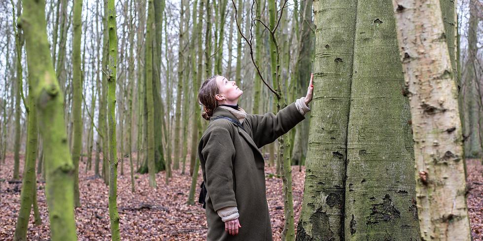Sansebad i skoven