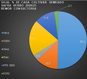 grafico 3.jpg