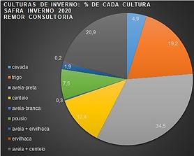grafico 1.jpg