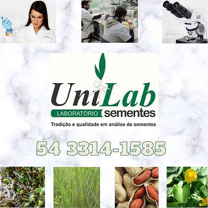 UNILABB (1).jpg