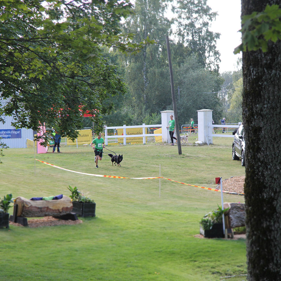 K9 Biathlon Segersjö
