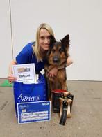Amanda & Fabbe 3.e plats, Agria Freestyle Cup klass 1.