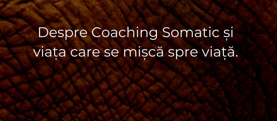 Despre coaching somatic și viața care se mișcă spre viață