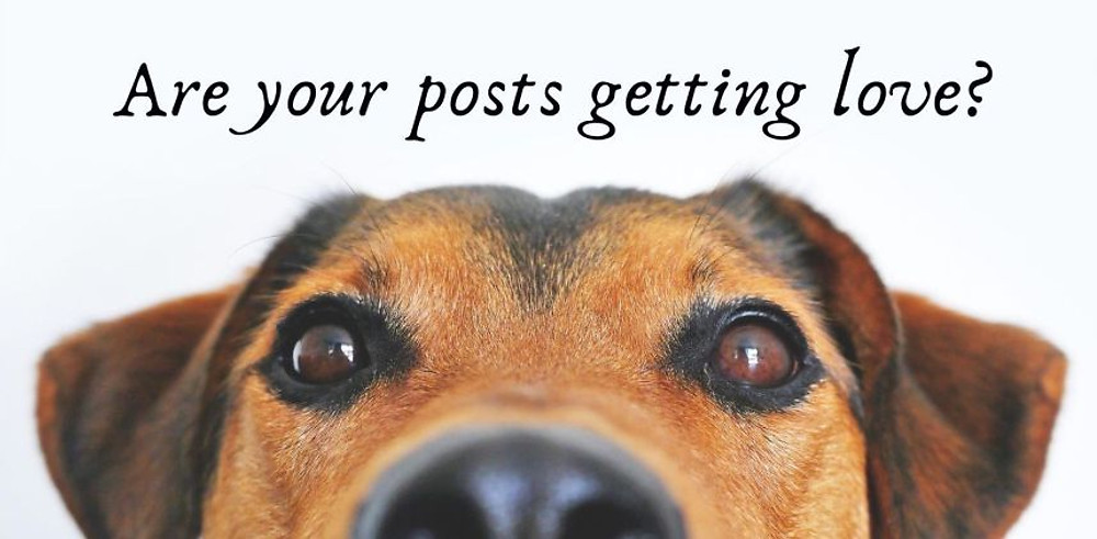 are your posts getting love?