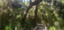 150 Erna Nixon Park.jpg