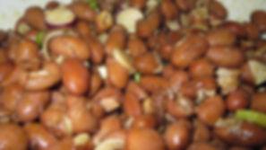 Fižolova solata