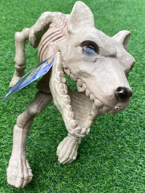 Skeleton Fido