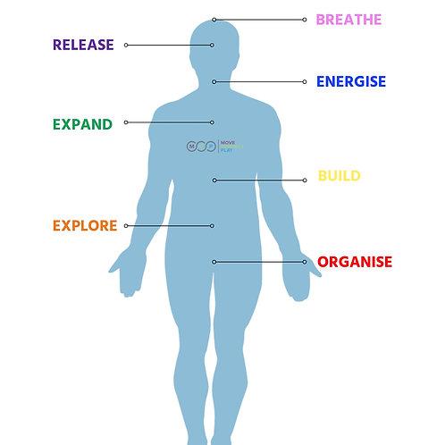 Movement & Nutrition Optimisation