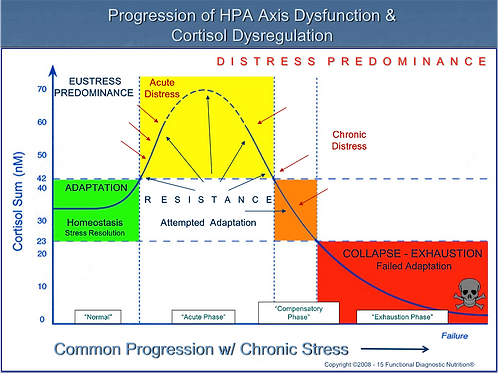 Adrenal Stress Test (AST)