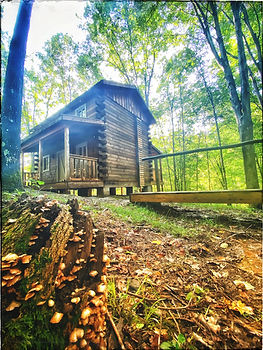 Sugar Maple Outside - Cabin 2.jpeg