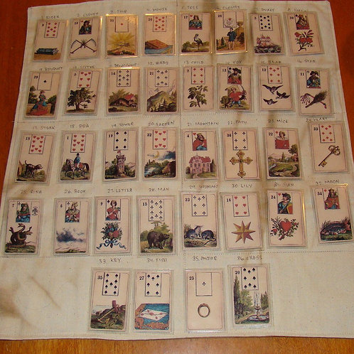 GT Lenormand - 6 to 12 months