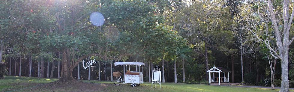Cart under love tree at a wedding
