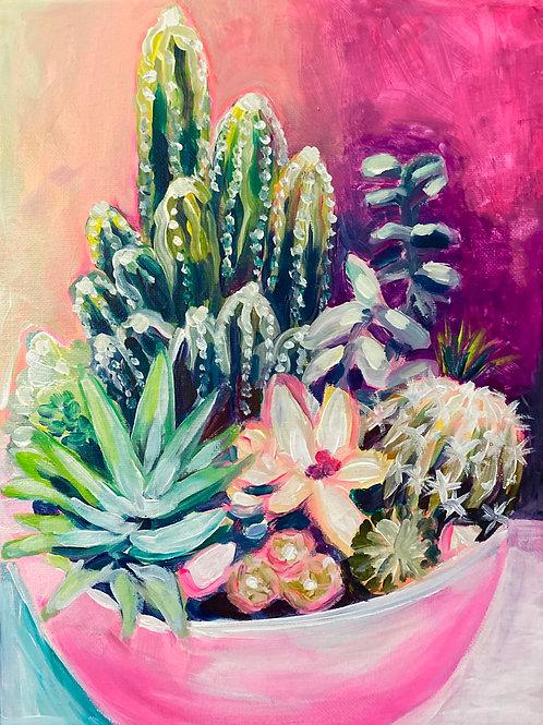 Quarantined Cacti