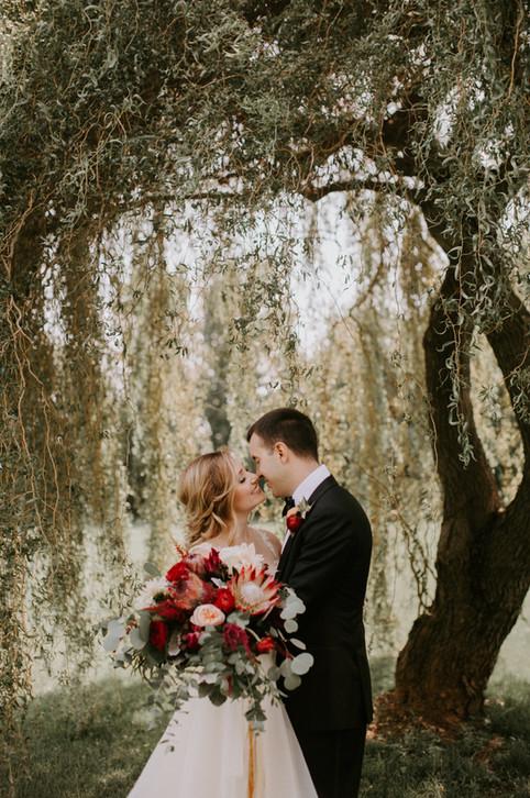 Sarah Brookhart Photography