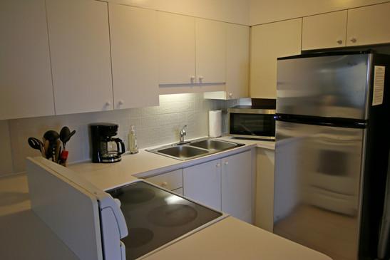 Kitchen Condo 20