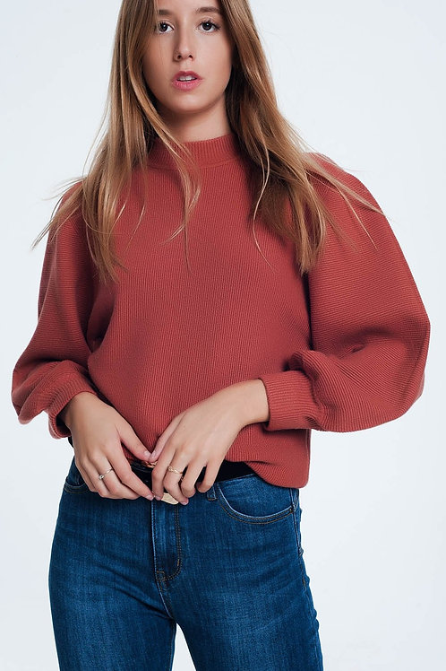 Brown Sweater With Long Sleeves and Round Neckline