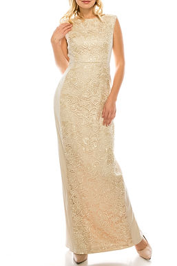 Adrianna Papell Champagne Embroidered Lace Inset Column Evening Dress