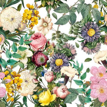 6Lovely Flowers.jpg