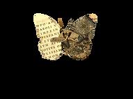 LogoA1.png