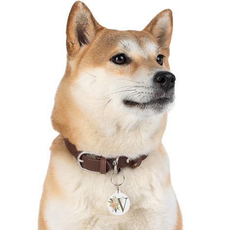 personalized-floral-pet-tag-w_edited.png