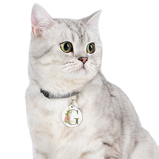 personalized-floral-pet-tag-g_edited.png