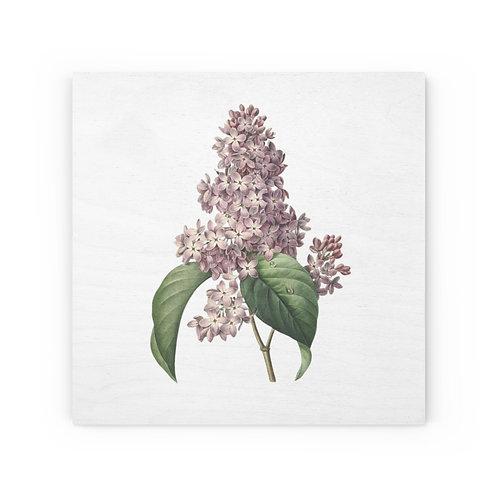Lilac Wood Canvas
