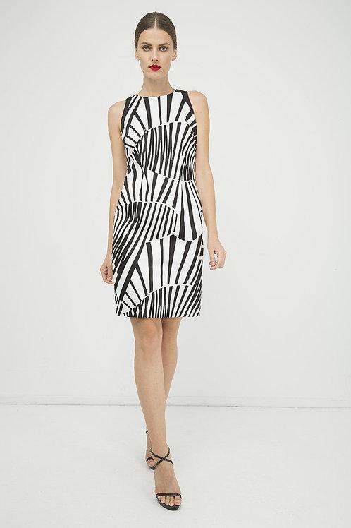 Fitted Sleeveless Print Dress