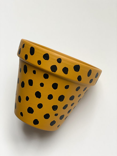 Mustard Plant pot