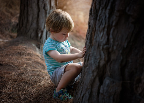 Portrait of a small boy looking at a tree by Christchurch family photographer Kirsten Naomi Photography  | Family Portraits | Lifestyle Photography | Environmental Portraits | Simply Authentic
