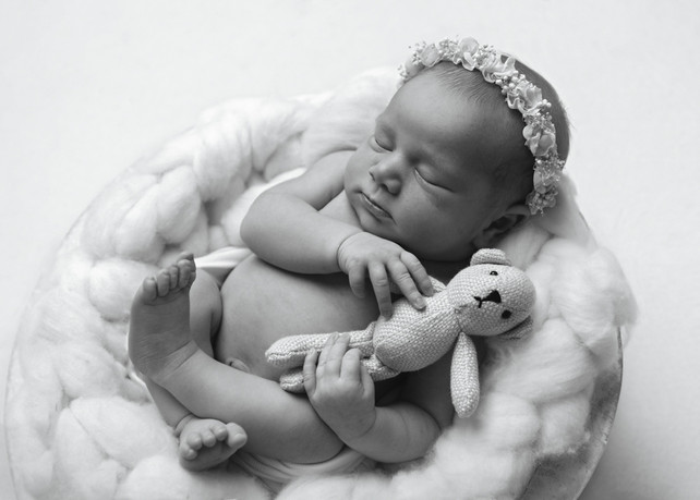 Photograph of a newborn baby girl sleeping in a wool filled in a bowl, cuddling a tiny teddy, by Christchurch newborn baby & family photographer Kirsten Naomi Photography