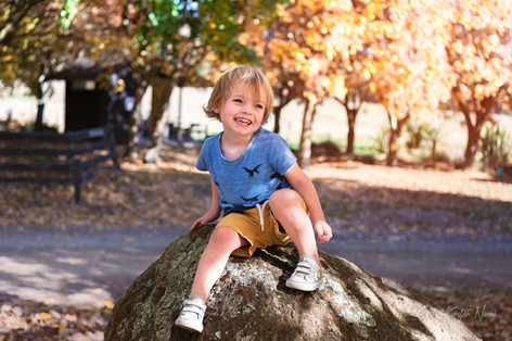 Portrait of a boy sitting on a rock in the autumn by Christchurch family photographer Kirsten Naomi Photography    Family Portraits   Lifestyle Photography   Environmental Portraits   Simply Authentic