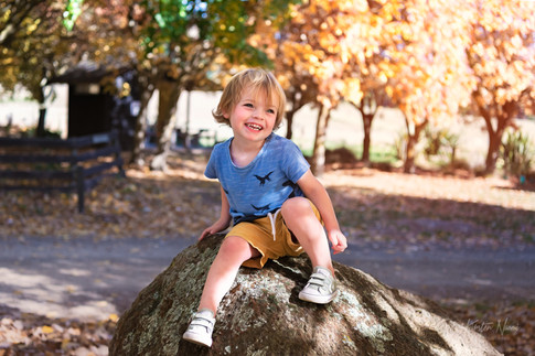 Portrait of a boy sitting on a rock in the autumn by Christchurch family photographer Kirsten Naomi Photography  | Family Portraits | Lifestyle Photography | Environmental Portraits | Simply Authentic